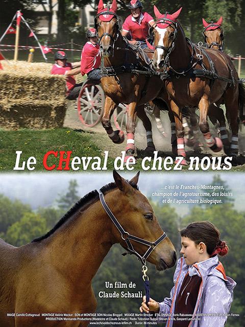 LE CHEVAL DE CHEZ NOUS
